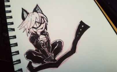Chat Noir by AgentSkull