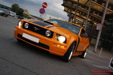 Ford Mustang GT 500 by RedMax88