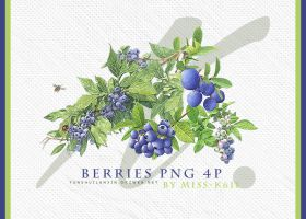 Berries Png by MISS-K611