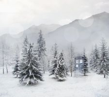 Le Tardis in the Snowy Forest by sylview