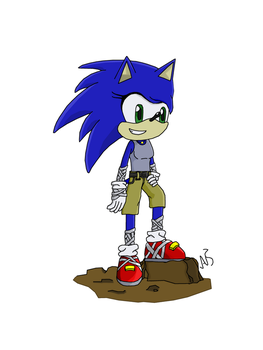 Sonica the Hedgehog by Storming777