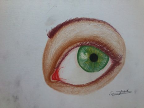 self portrait of my eye by csooomle