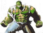 The Incredible Hulk by Hulkster77