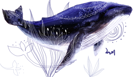 Humback Whale's Song by LACHANMI