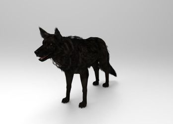 WOLF by FiL3dModels
