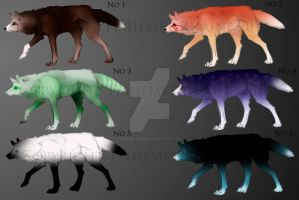 wolf adopts by Rhaine-Horses