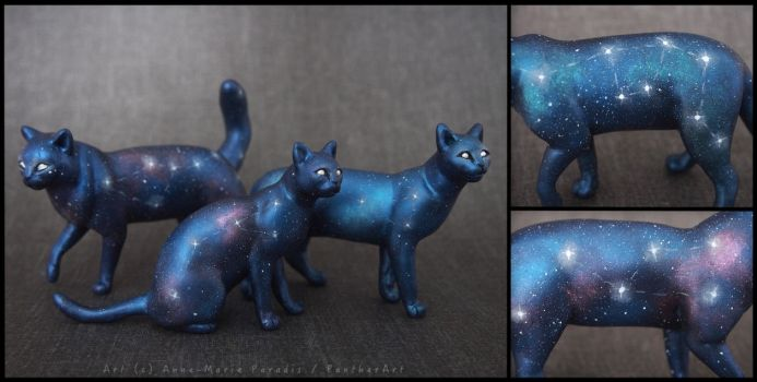 :.Galaxy cats.: by XPantherArtX