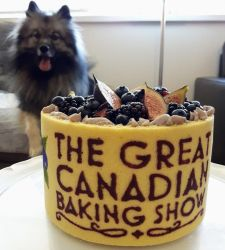 The Great Canadian Baking Show by bluefeathers