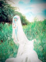 AugustBride_HB to MikuHatsune_ by H-I-T-O-M-I