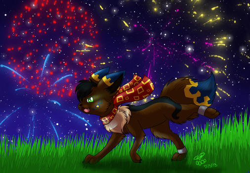 Running Though Fireworks by Ging33rsnap