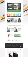 Collective -Professional WordPress Theme by DaJyDesigns