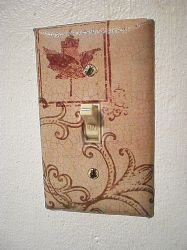 Light Switch Face Plate I by thefancysparrow
