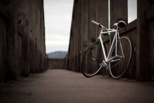 Fixie by ketoo