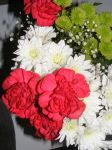 Christmas Bouquet for Everyone by BlueIvyViolet