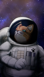 Space Cat by Chander-Fox