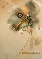 Old Warden Airshow Poster by tredowski