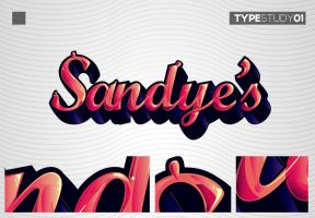 Type study 01 by kampollo