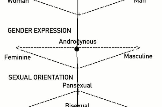 My Gender/Sexual Identity by katwatrous