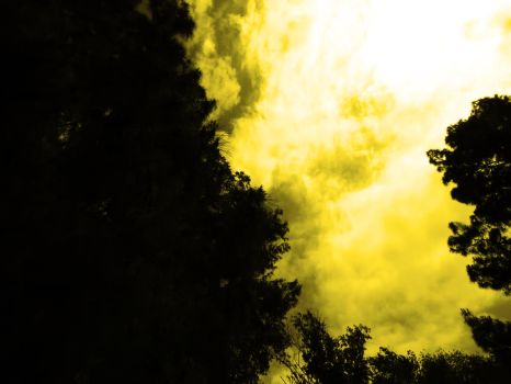 Yellow sky by Fiction-Art-Author