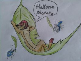 Timon is snoozing in a hammock by Mirinata