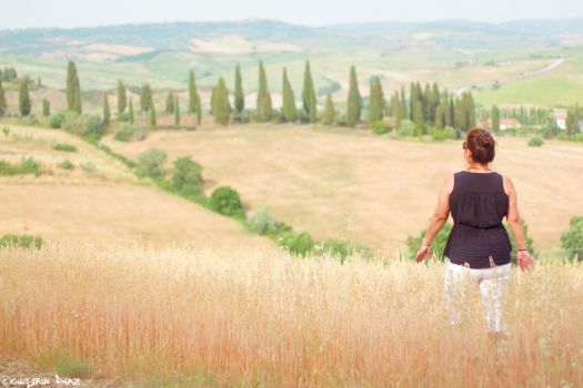 Val d'Orcia by gustiidiaz