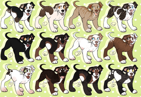 Little Pittie Adopts! (CLOSED) by AxesAdopts