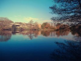 Mill Pond, Loxley Valley, Sheffield. by AngeliqueChan