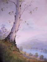 Birch on the Cliff by Loo1Cool