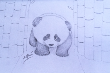 Panda drawing for my friends by artmusic981