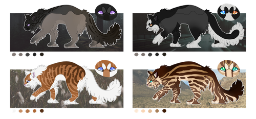 Cat adopts [2/4 OPEN] by Ragthanatos