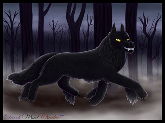 .:Dark Wolf:. by DarkMageVarja