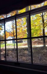 Windowscapes (Fall) by SunflowerLover39