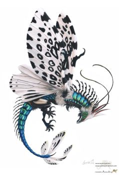 Bottle leopard Moth Dragon by Sunima