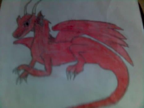 Dragon :D by Plevel