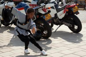 Kung Fu Motor Girl by steppeland