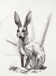 Antelope Jackrabbit by Alithographica