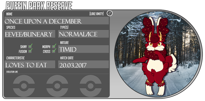 PKMNation: Once Upon A December by Furuitcake