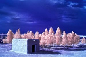 Afghanistan in Blue by swiftmoonphoto
