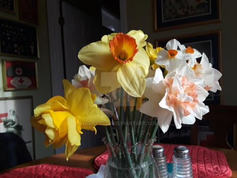 Daffodils by GiantToby