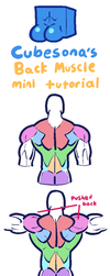 TUTORIAL: Back and Shoulders by Cubesona