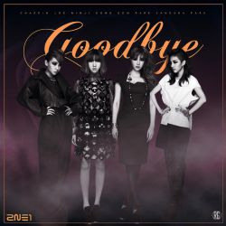 2NE1: Goodbye 3 by Awesmatasticaly-Cool