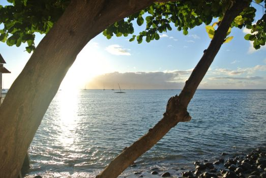 Maui Sunset 2011 by timtam4