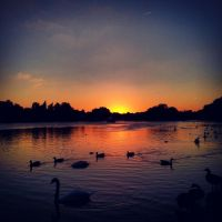 Hyde Park, London by VerdeAlbastru