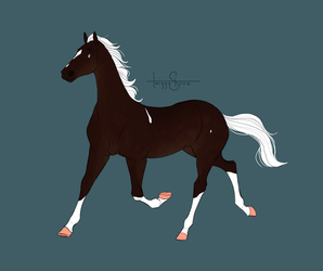 Chocolate Palomino Design by TwiggyStone