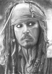 Savvy? by i-want-the-red-one