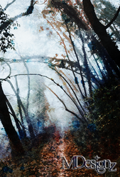 Deep Forest September by 33M
