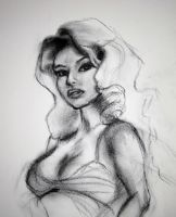 Charcoal Sketch by faedri