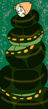 Cocooned anaconda Pearl by junglepythonpearl