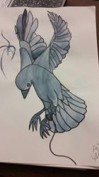 raven by Lucanner