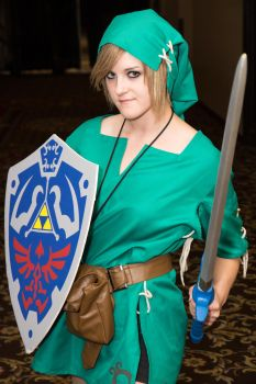 Link by Troy-Hanson-Photo